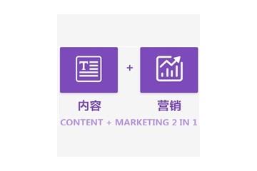 常用的网站模板就选紫虎科技