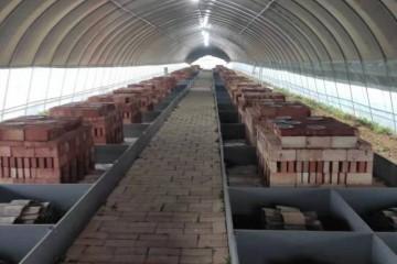 山东药蝎养殖厂家讲述蝎子冬季的饲养管理