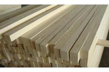 东营接木方公司联系方式