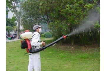 明溪白蚁防治之白蚁预防方法