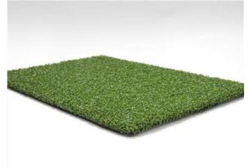 批发价格草皮种植合作社分析草坪除莎草基础知识